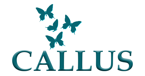 Callus Salon